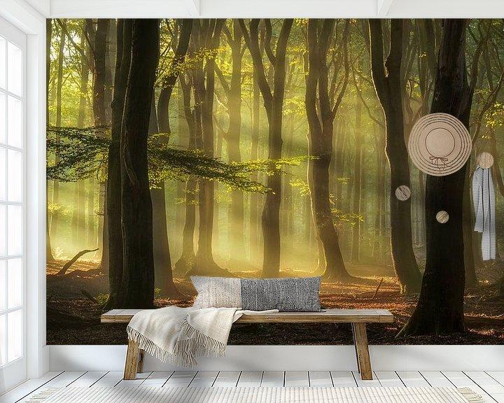 Sfeerimpressie behang: Golden Morning ! van Rigo Meens