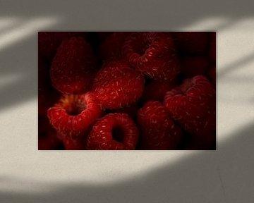 Zomerfruit: frambozen 2 van Jenco van Zalk