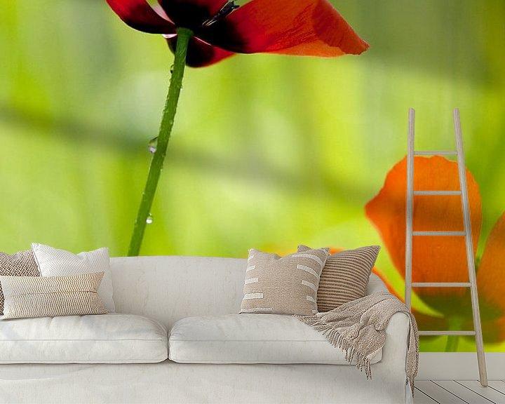 Sfeerimpressie behang: Poppy love -  Klaproos van Andrea Gulickx