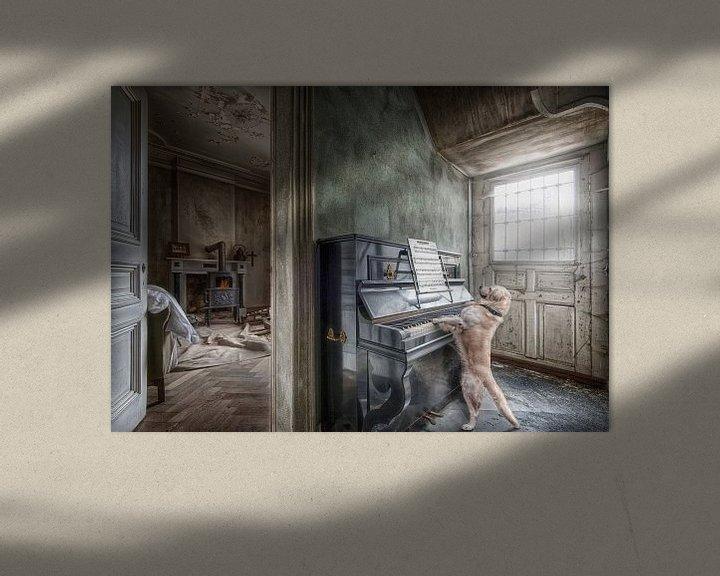 Beispiel: Hund spielt auf dem Klavier von Marcel van Balken