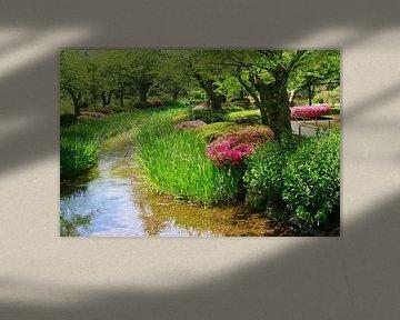 Japanische botanische Gärten