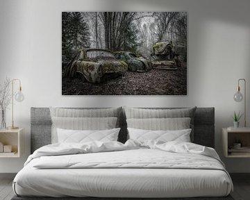 Véhicules en fin de vie Forêt sur Maikel Brands