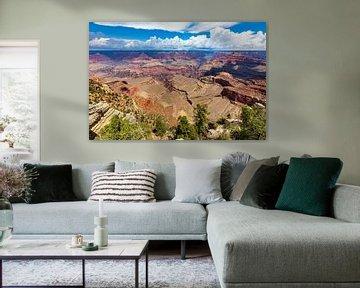 Grand Canyon - Top of the world van Remco Bosshard