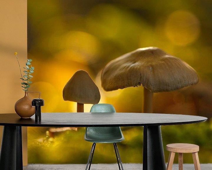 Sfeerimpressie behang: Autumn is rising - Paddenstoelen voor op de kinderkamer van Andrea Gulickx