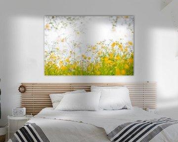 Yellow Embrace - Butterblumen von Andrea Gulickx