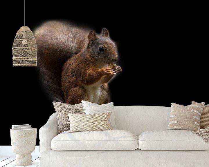 Beispiel fototapete: Eekhoorn von STEVEN VAN DER GEEST