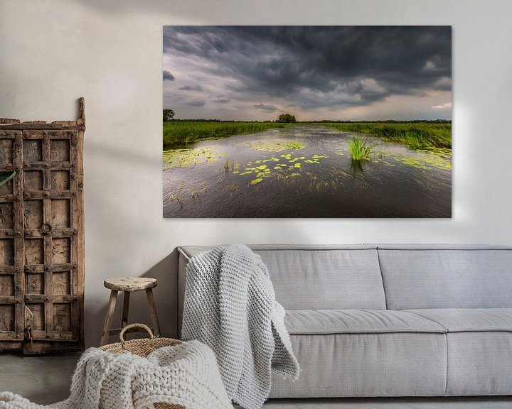 Sfeerimpressie: Nationaal Park de Weerribben-Wieden van Jenco van Zalk