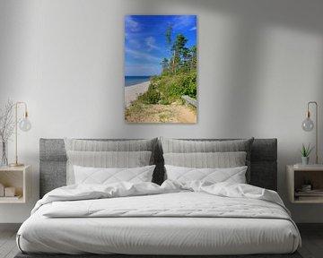 Steilküste an der lettischen Ostsee von Gisela Scheffbuch
