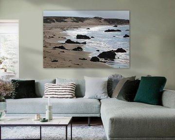 De eenzame zeeolifant - Highway 1 Verenigde Staten van Berg Photostore