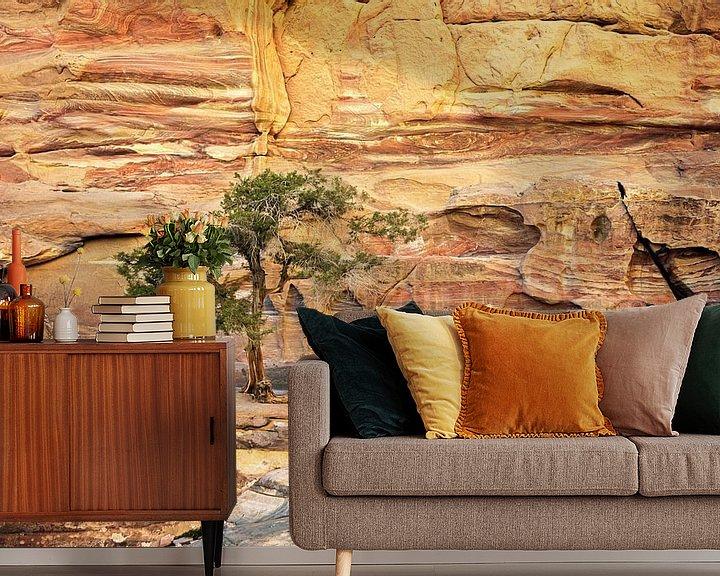 Sfeerimpressie behang: boom op de rotsen - Petra, Jordanië van Jan de Vries