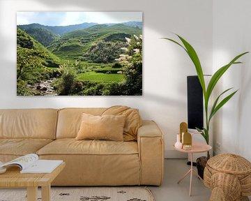 Rijstvelden Dazhai - China von Berg Photostore