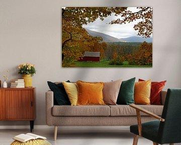 Herbst in Vermont van Borg Enders