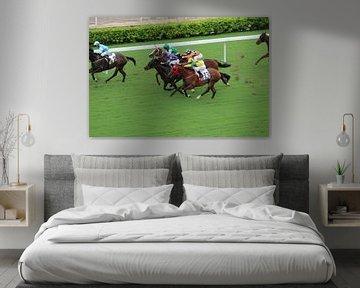 Paardenrace Hong Kong van Berg Photostore