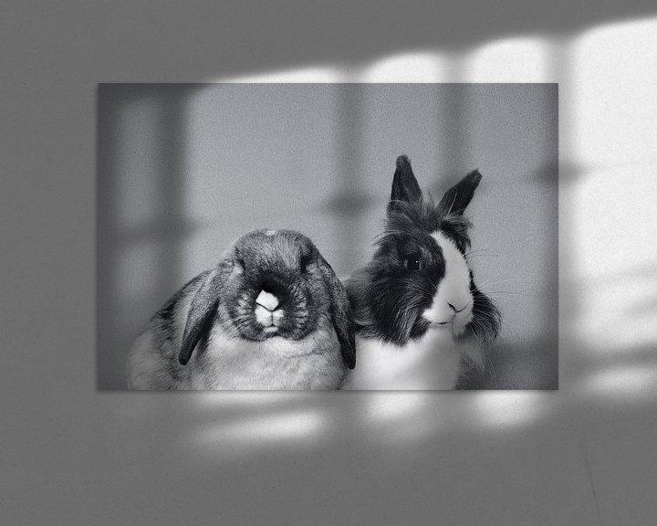 Beispiel: Kaninchen von Charlotte van de Zande