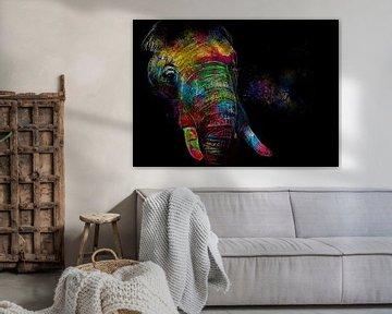 De Regenboog olifant van De nieuwe meester