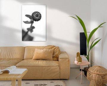 Distel in de knop in zwartwit van Tot Kijk Fotografie: natuur aan de muur