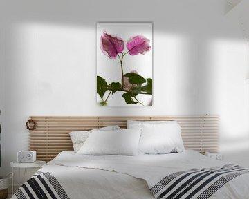 Botanische roze bladeren op magische retour van Tot Kijk Fotografie: natuur aan de muur