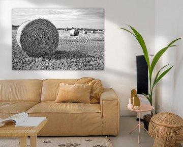 Hooirollen landschap in Denemarken (zwartwit) van Tot Kijk Fotografie: natuur aan de muur