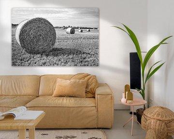 Fahne im Sonnenlicht von Tot Kijk Fotografie: natuur aan de muur