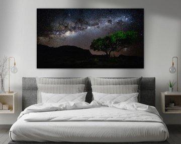 Sterrenhemel met Melkweg boven boom - Aus, Namibië van Martijn Smeets