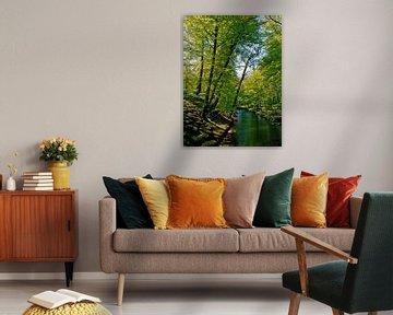 Natuur, Landschapsfoto van Rob Jansen