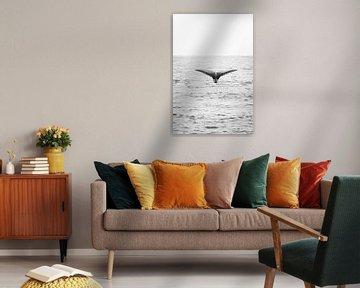 Ein Walschwanz im Pazifik von Chantal Kielman
