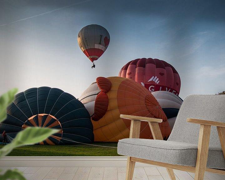 Sfeerimpressie behang: Ballonfiesta, Barneveld van Marlous en Stefan P.