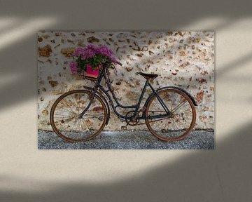 Altes Fahrrad mit Blumenkorb von Daan Kloeg