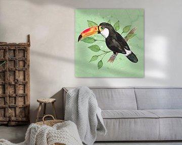 Toucan von Bianca Wisseloo