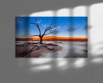 Versteende boom in Dodevlei / Deadvlei nabij de Sossusvlei, Namibië van Martijn Smeets