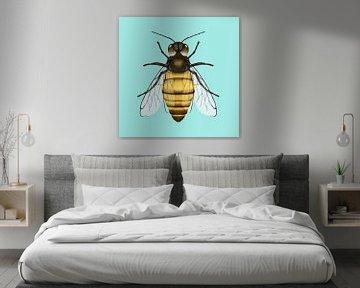 Honingbij van Bianca Wisseloo