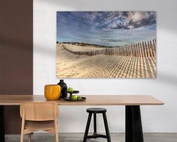 De zon breekt door in duinen van Den Haag sur Rob Kints