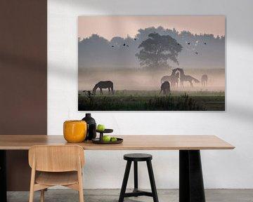 Paarden in de mist von Jitske Van der gaast