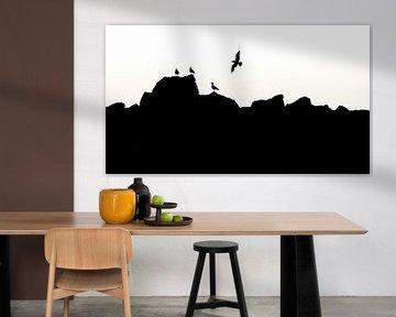Silhouet vogels opaalkust. van Jan Linskens