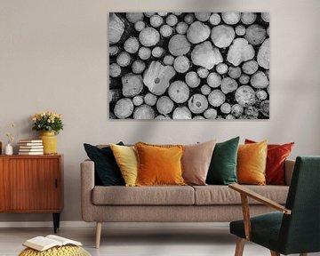 Boomstammen zwart-wit von Marrit Molenaar