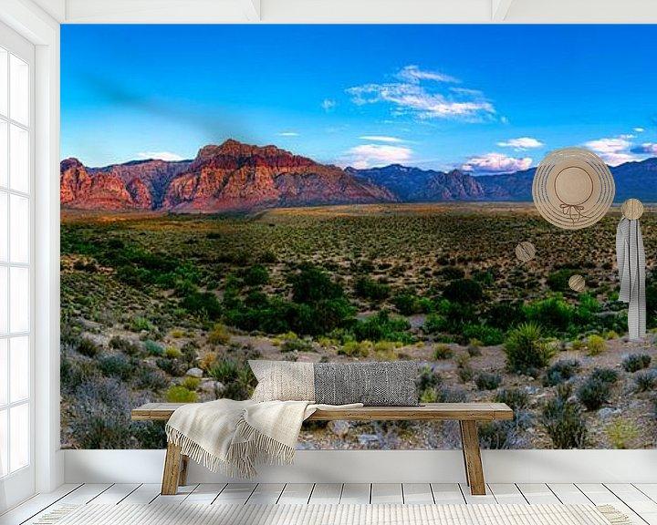 Impression: Red Rock Canyon - Las Vegas sur Remco Bosshard