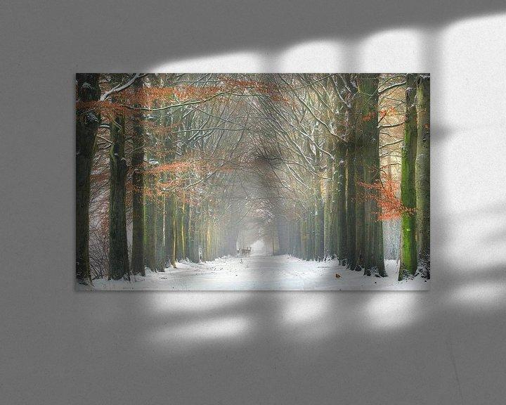 Sfeerimpressie: Wouwse plantage in de winter van Teuni's Dreams of Reality