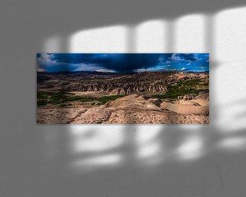 Oasis Death valley van Dave Verstappen