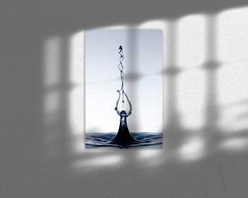 Black flower twister van Focco van Eek
