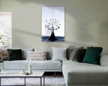 Black splash waterdrop van Focco van Eek