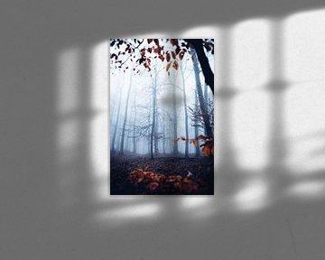 Mystischer Wald 018