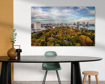 Le parc de l'Euromast à Rotterdam aux couleurs de l'automne sur MS Fotografie | Marc van der Stelt