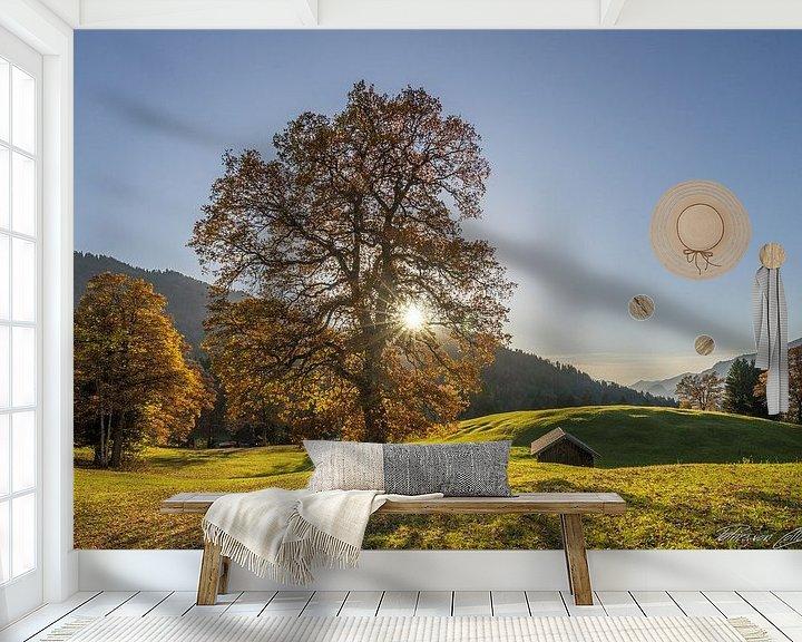 Beispiel fototapete: Herbstbaum von Patrice von Collani