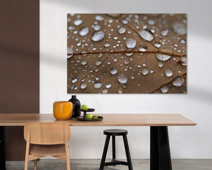 Sfeerimpressie: Regen druppels op een eiken blad van Cor de Hamer