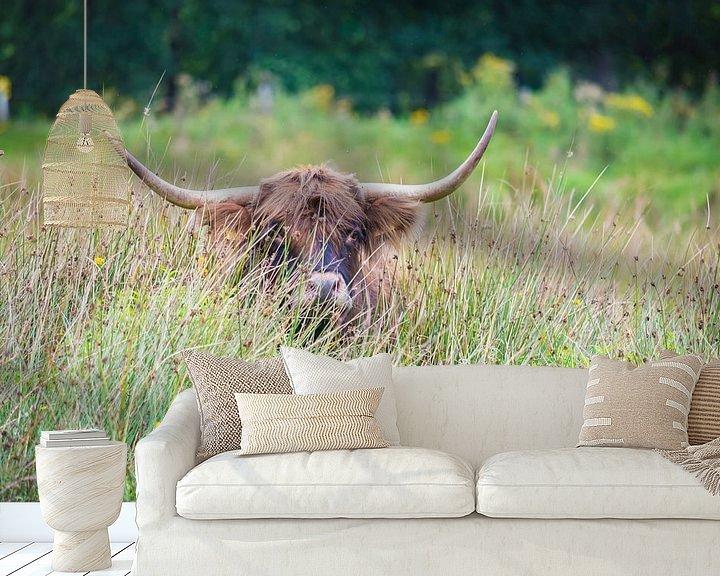Sfeerimpressie behang: Schotse Hooglander in het hoge gras van Ans Bastiaanssen