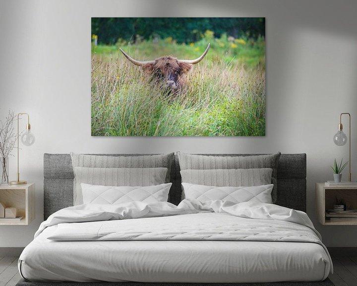 Sfeerimpressie: Schotse Hooglander in het hoge gras van Ans Bastiaanssen