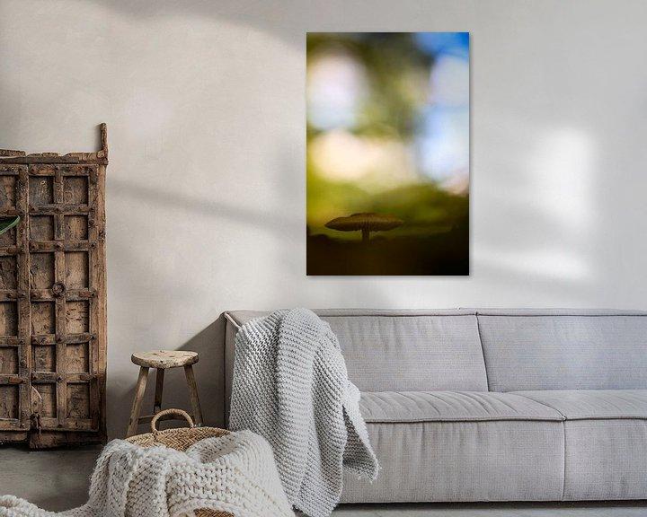 Sfeerimpressie: Paddenstoel met fraaie achtergrond van Mark Scheper