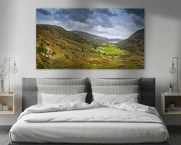 Panorama van de heuvels van Wales, Groot-Brittannië van Rietje Bulthuis