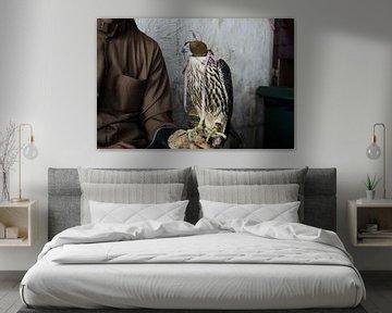 Falkner mit Falknerei Falke in Doha, Katar von iPics Photography