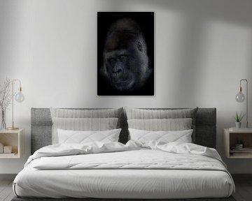 Gorilla silverback von Ron Meijer Photo-Art